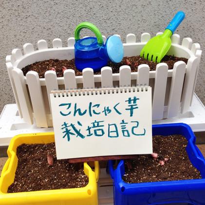 春:植えつけ編
