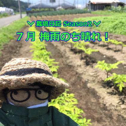 7月 梅雨のち晴れ!